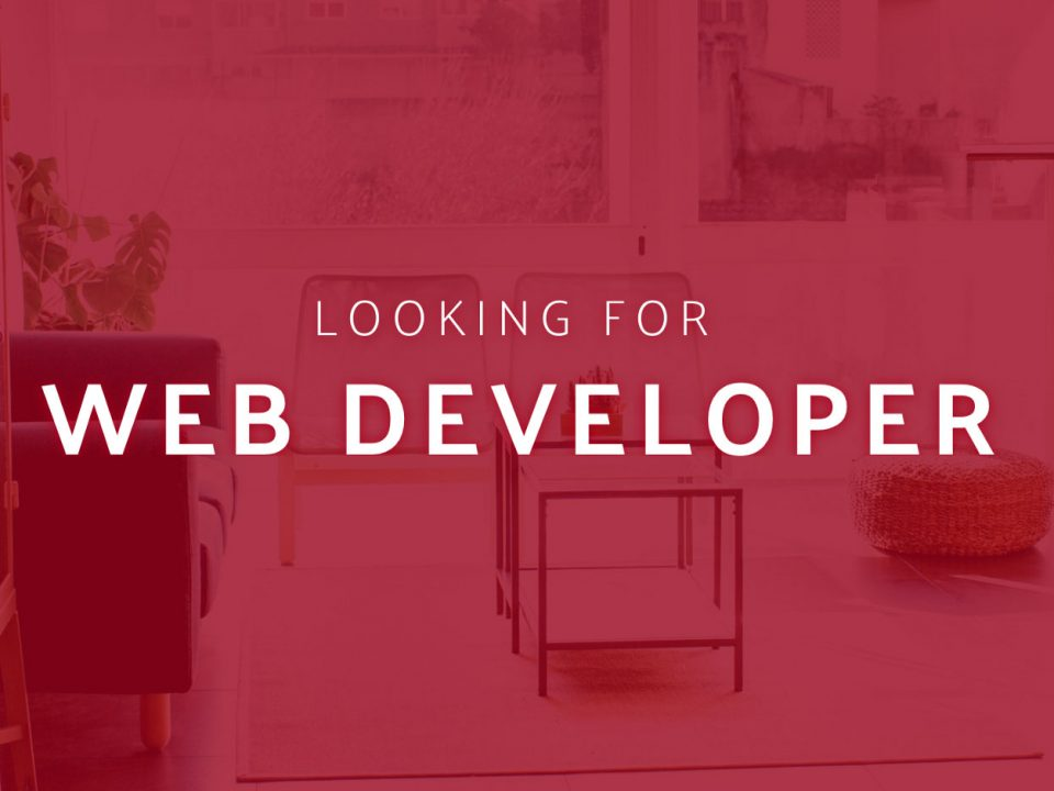 Looking for web developer