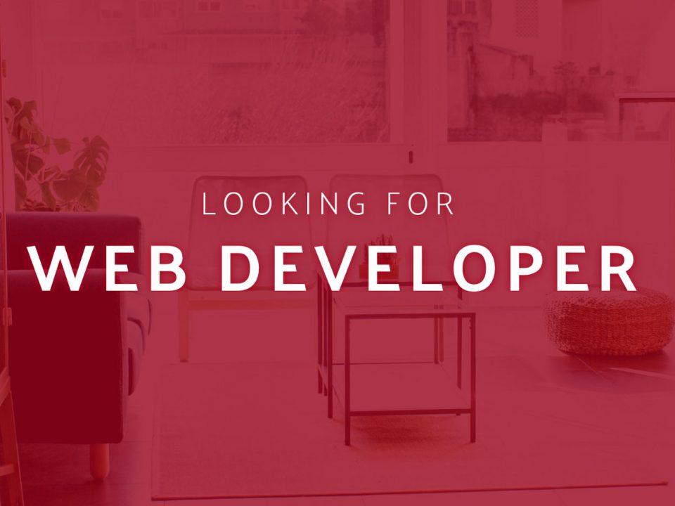Looking for web developer